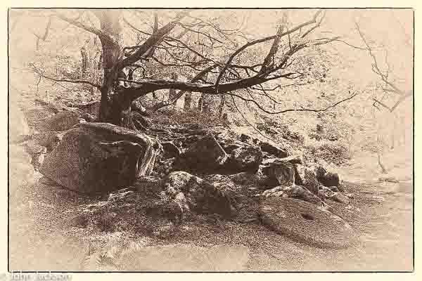 Padley-Gorge-170819-1-10a