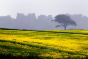 Hardwick Hall in Derbyshire, edited using Adobe Photoshop