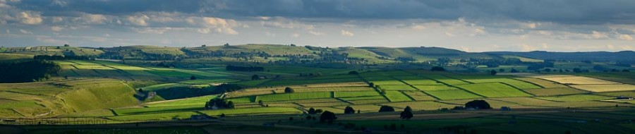 Fields and drystone walls in the Derbyshire Peak District. Photo © Chris James.