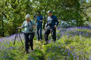 Photographing bluebells on a landscape photography course in Derbyshire. Photo © Chris James
