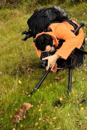 Landscape and nature photography training courses in the Derbyshire Peak District and Sheffield