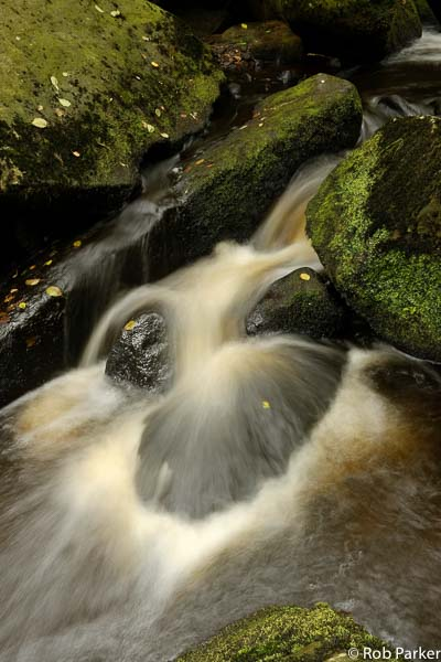 A waterfall in woodland near Sheffield. Photo © Rob Parker