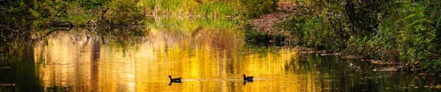 Cromford Canal © Chris James