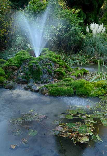 One of the thermal springs in the Derwent Gardens next to the Pavilion, where Peak digital Training is running beginners' digital photography courses. Photo © Chris James