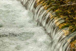 Weir in Lathkill Dale. Photo © Jacqui Dix