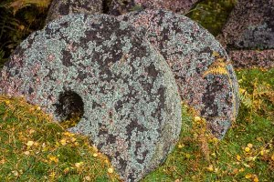 Peak District millstones in autumn. Photo © Chris James