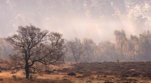 Peak District autumn landscape photography course run by Peak Digital training