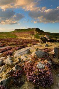 Heather moorland near Sheffield. Photo © Chris James