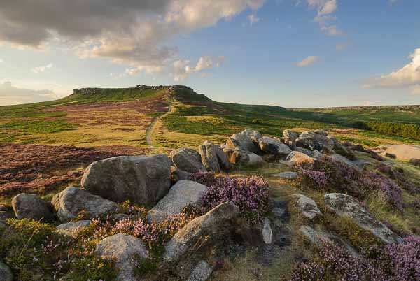 Heather moorland on the edge of the Peak District near Sheffield. Photo © Chris James