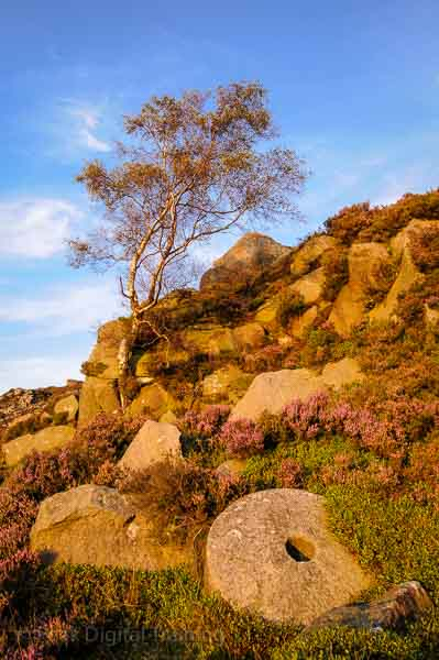 Abandoned millstone on moorland near Sheffield. Photo © Chris James