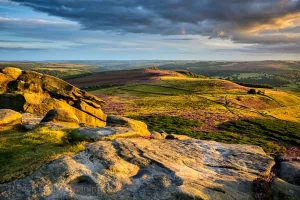 Heather moorland on the edge of Sheffield. Photo © Chris James