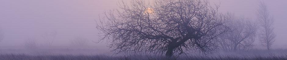 Misty sunrise in the Peak District. Photo © Chris James