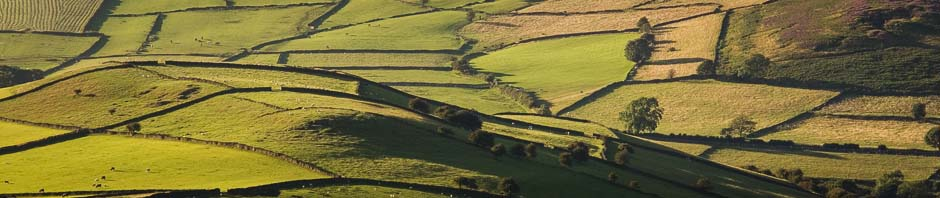 Peak District landscape - field patterns in late summer
