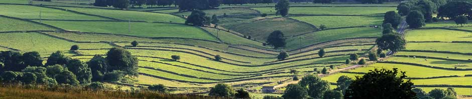 Peak District field patterns seen from the location for a photography course for users of Nikon dslr cameras. Photo © Chris James