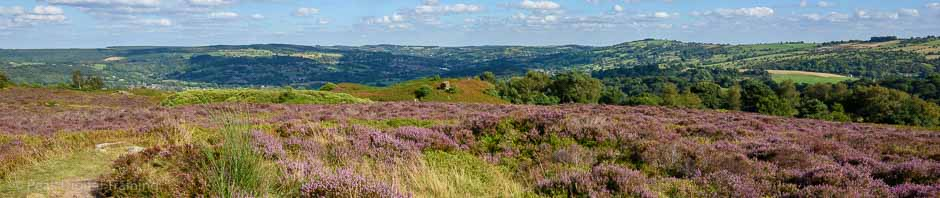 Stanton Moor in the Peak District, where Peak Digital Training is running a landscape photography course. Photo © Chris James