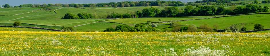 Meadows in the Peak District, where Peak Digital Training run photography courses for beginners. Photo © Chris James