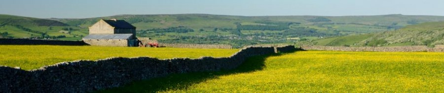 Barn and buttercups in the Derbyshire Peak District © Chris James