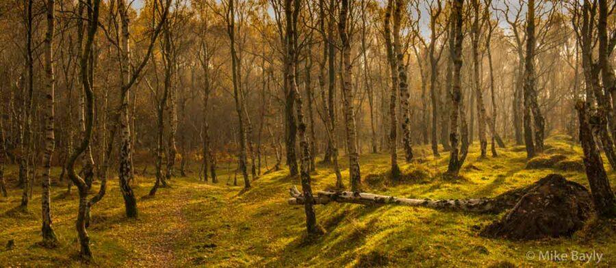 Peak District autumn landscape photography course near Sheffield © Mike Bayly