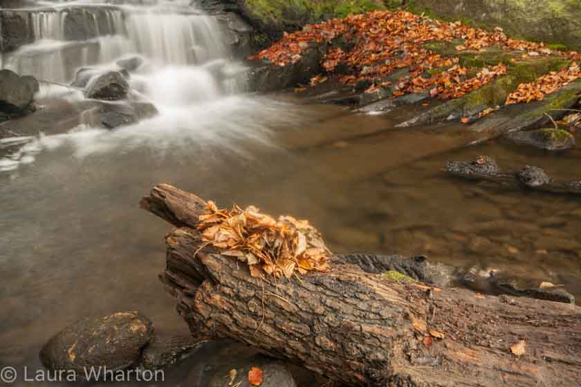 Peak District landscape photography courses by Peak Digital Training. Photo © Laura Wharton