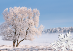 A Christmas gift voucher for photographers in Sheffield and Derbyshire by Peak Digital Training