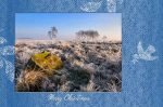Xmas voucher for photography courses and one to one training in Derbyshire, Sheffield & Peak District