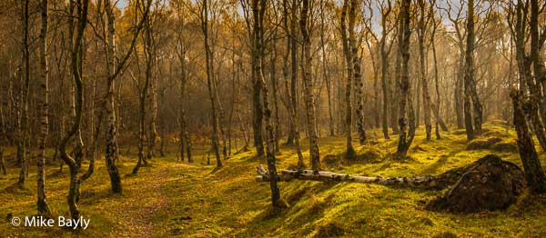Peak District autumn landscape photography course near Sheffield